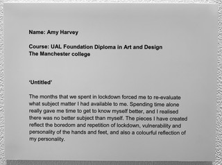 Amy Harvey