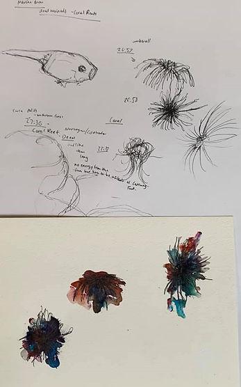 Lockdown research oceans drawings FMP.jp