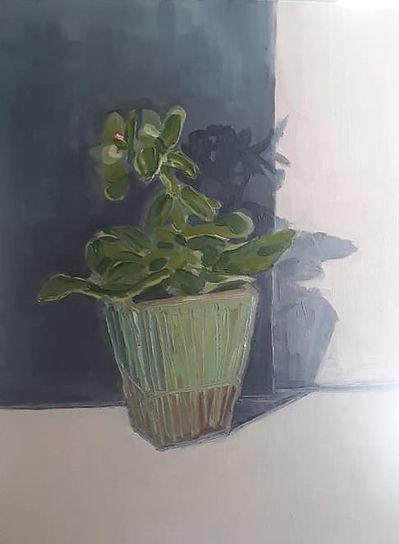 Still life with Plant (2).jpg
