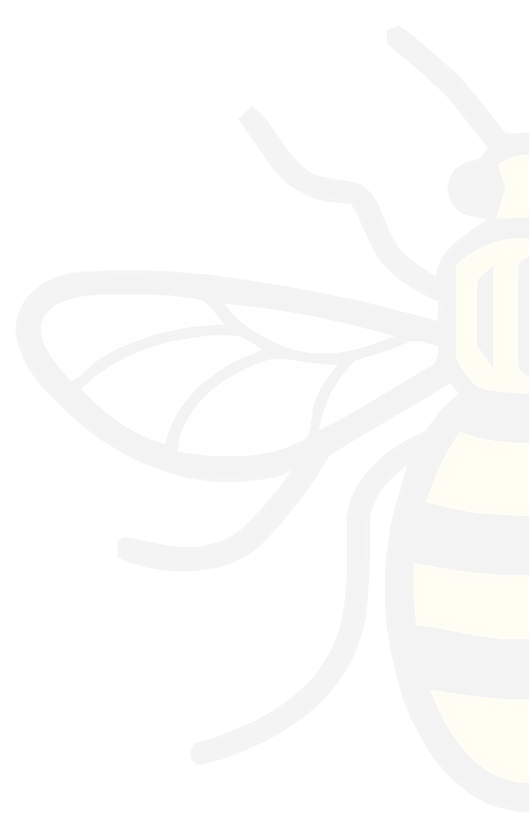 Half%2520Bee3_edited_edited.png