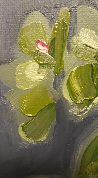 Close up Still life with plant.jpg