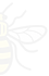 Half%2520Bee2_edited_edited.png