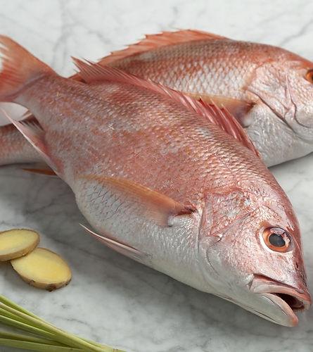 red-snapper-recipes1.jpg