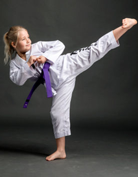 Martial arts for kids, child side kick