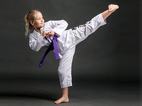 Taekwondo martial arts for kids