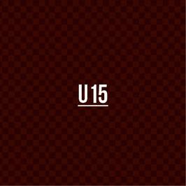 Teams_Sijos_U15.jpg