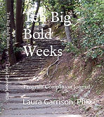 Ten Big Bold Weeks Journal Cover_edited.