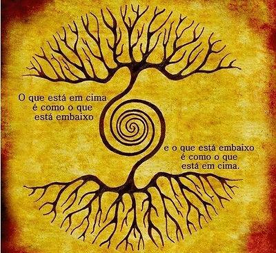 árvore_emcima_em_baixo-min(1).jpg