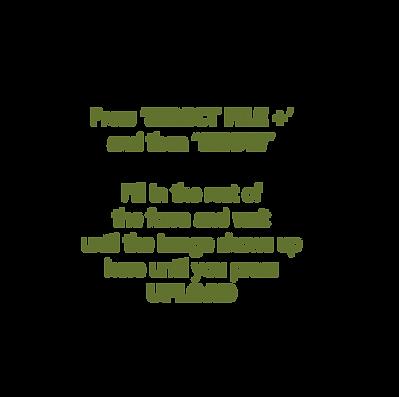 upload instructions-12.png