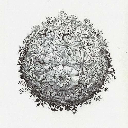 Planet undergrowth