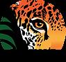 Rainforest_Trust.png
