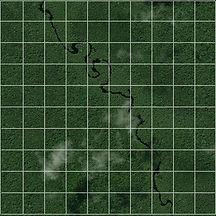 SquareKilometerForest.jpg