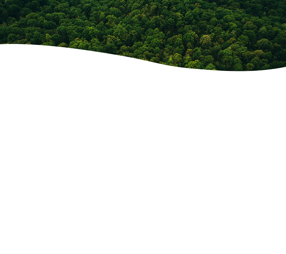 LANDINGPAGE_background_03.png