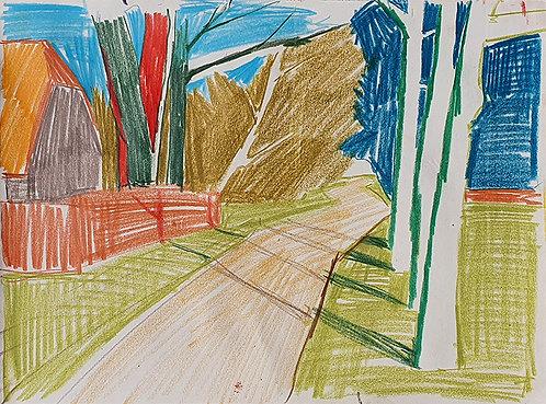 Trees Along Summer Road