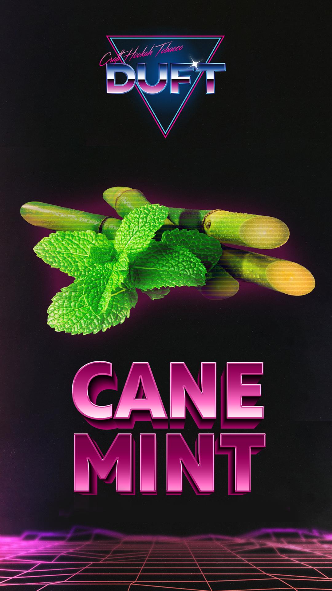 Cane mint
