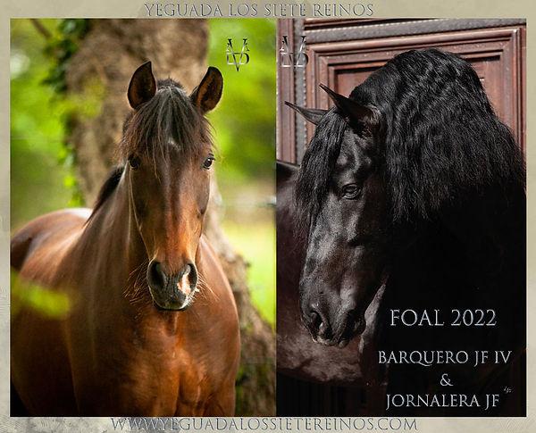 ANNONCE_FOAL_2022_JORNA_BARQ.jpg