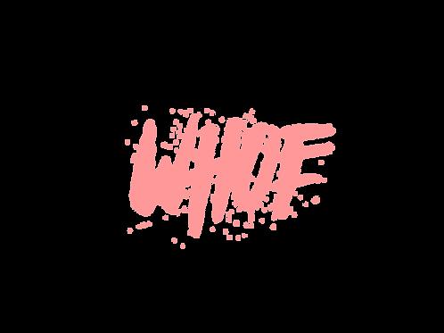 Wordmark/Lettertype Logo