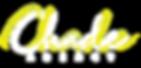 chade agency logo B.png