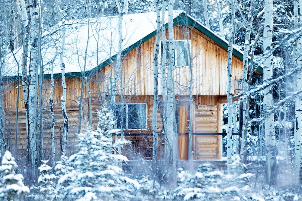 Moose Cabin - Eagle Bear Lodge