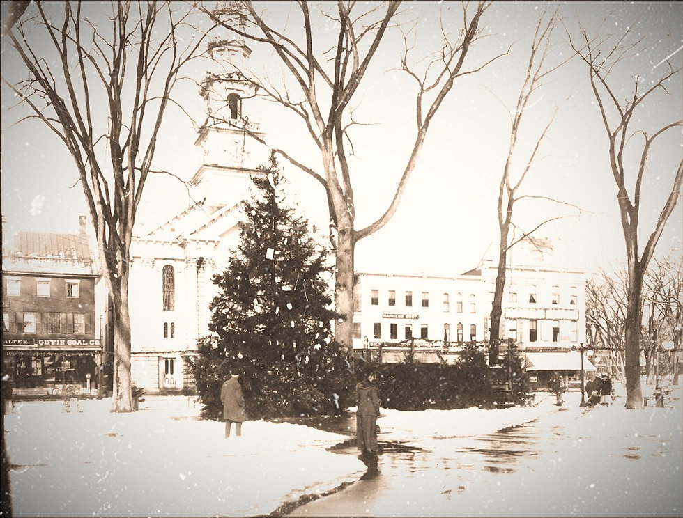 Central_Square_Christmas_Tree_in_Keene_N