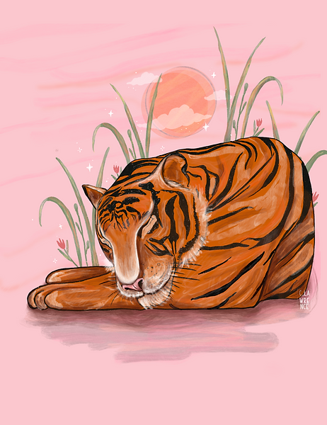 tiger_spot_illustration.png