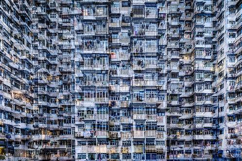 Density 8