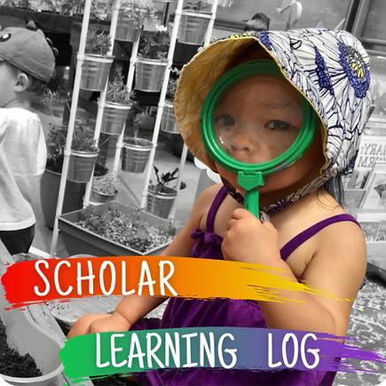Scholar Learning Log.png