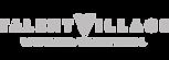 logo talent village, agence, gris, nicov