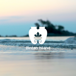 Bintan - Singapour