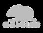 gris logo, origins, laury thilleman, mis