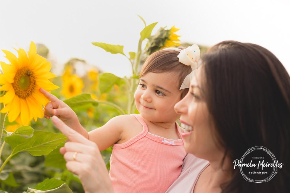 Dia das mães 2021 - Holambra-4.jpg