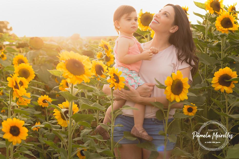 Dia das mães 2021 - Holambra-50.jpg