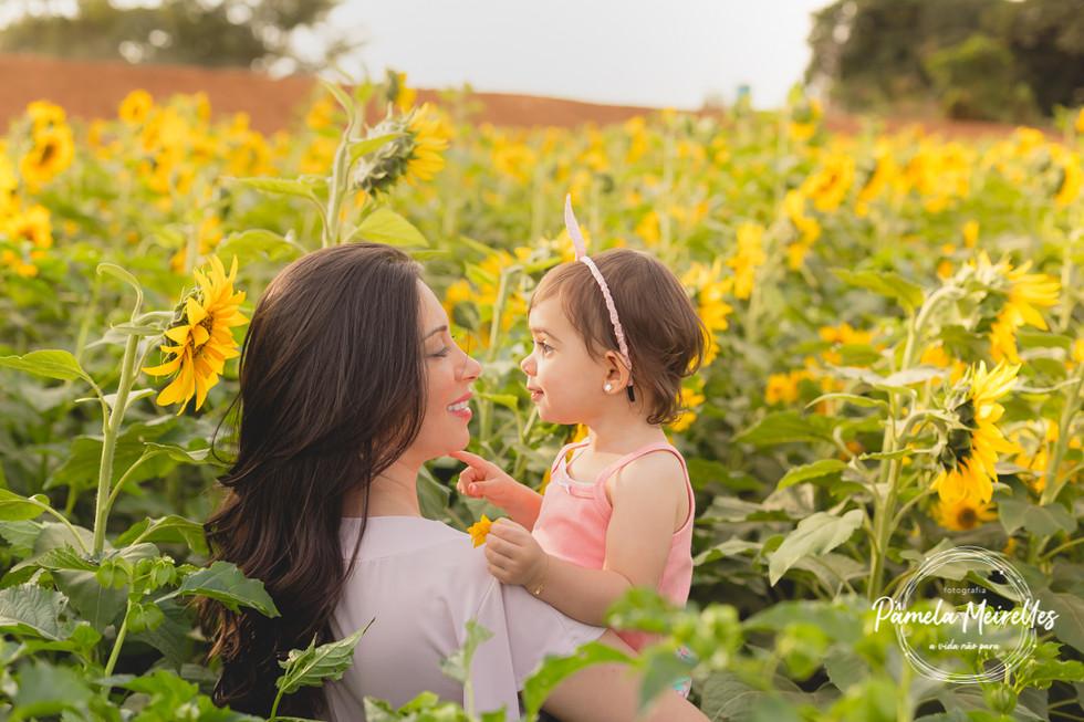 Dia das mães 2021 - Holambra-14.jpg