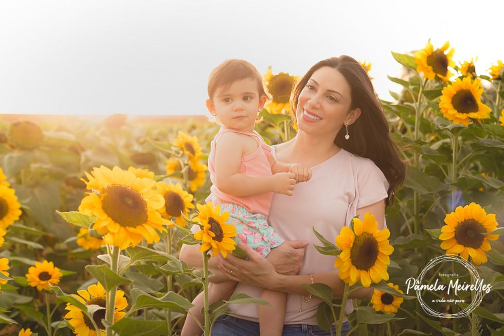 Dia das mães 2021 - Holambra-53.jpg
