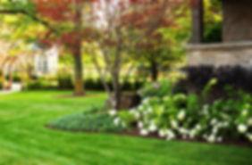 FREE Spring lawn fertilize