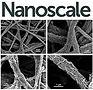 Nanoscale-18.jpg