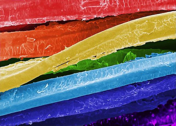 MXene Coated Yarn Rainbow_NanoArtography