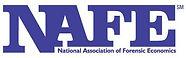 NAFE member, National Association of Forensic Economics, forensic economist, Seattle, economic damages, lost profits, business valuation, financial forensics expert