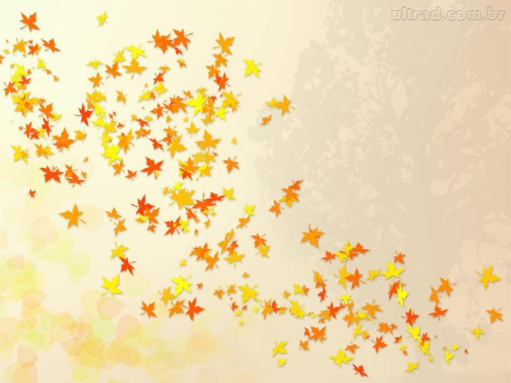 estampa de outono