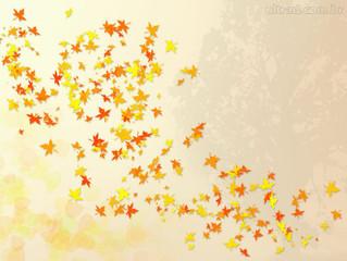 Inspiração Vitrine de Outono