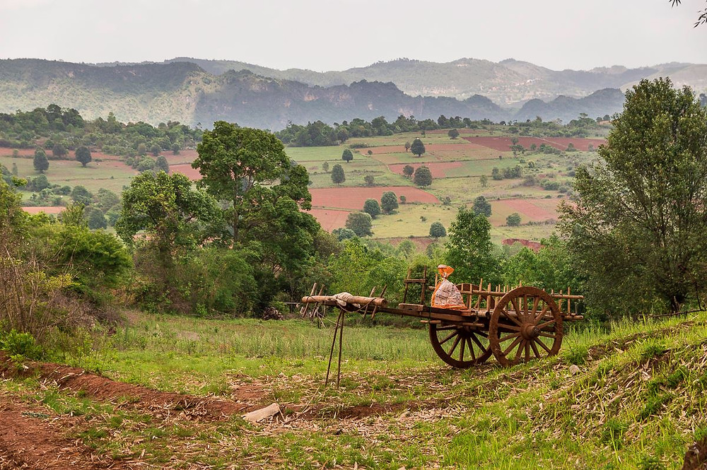 Wander The View Of Kalaw On Trek
