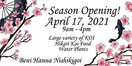 Beni Hanna Opening.jpg