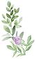 Lavender Rose Coordintation - LOGO_GRAPH
