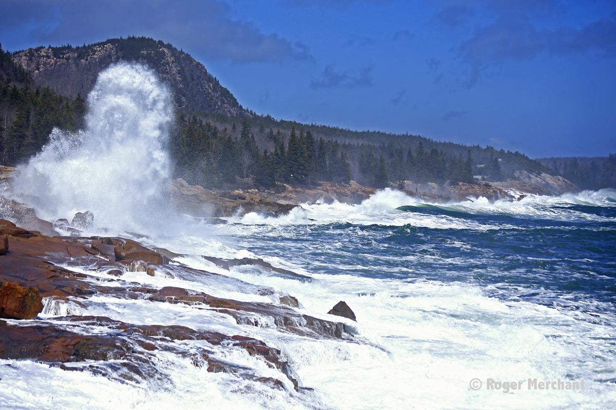 Acadia Ocean Drive Surf