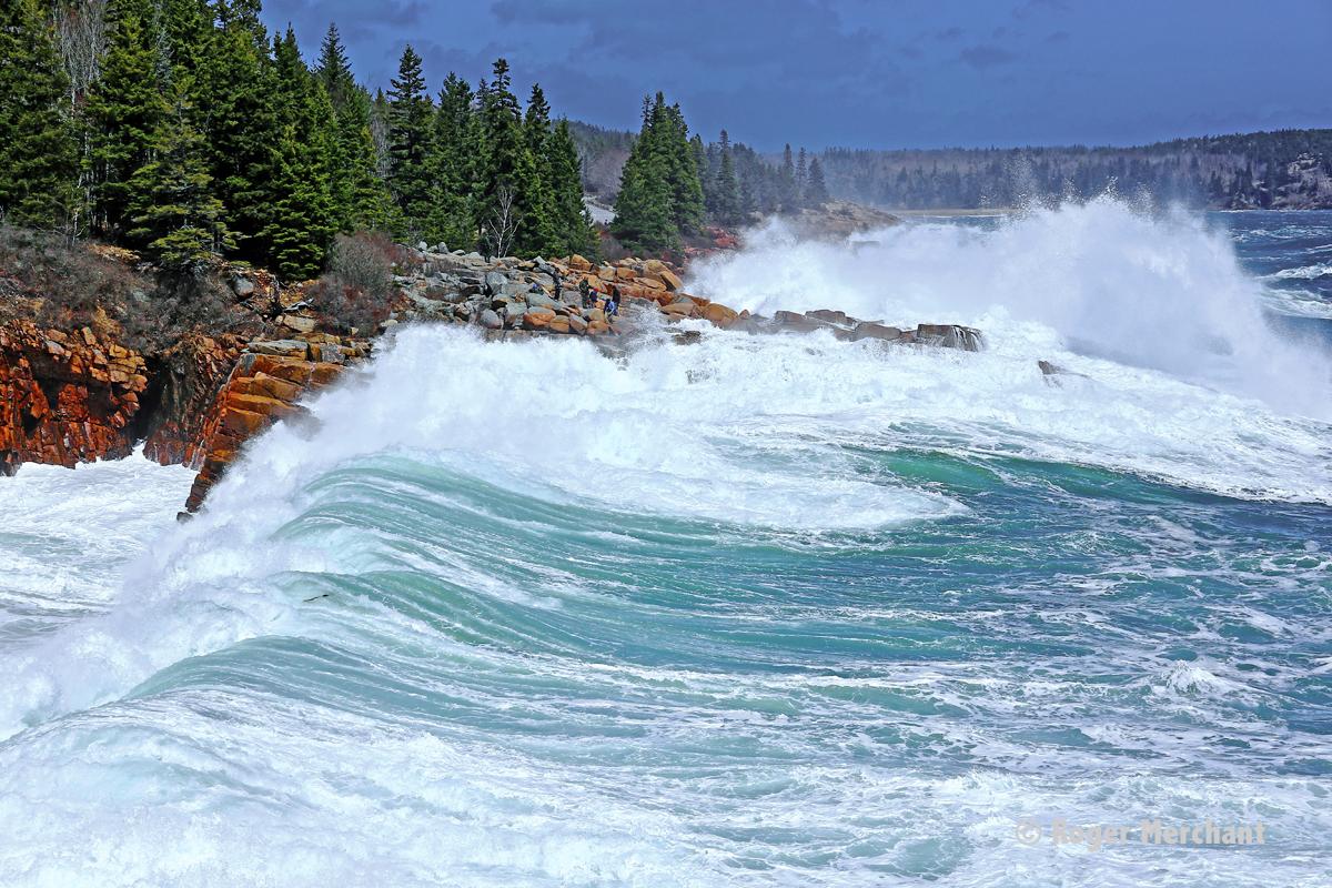Acadia Storm Surf