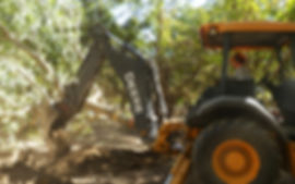 orchard excavation.jpg