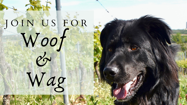 Attend Woof & Wag At The Winery