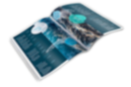 Broschüren Magazine Kataloge Hefte