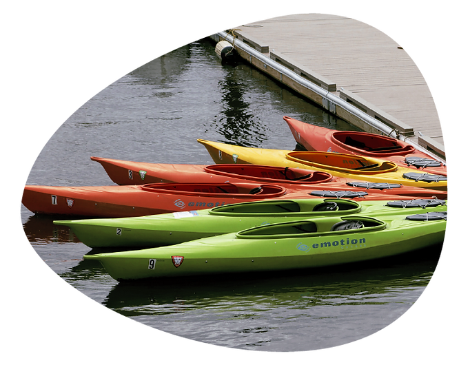 A line of kayaks of green, orange, and yellow aligned in a ray, anchored to the pier.