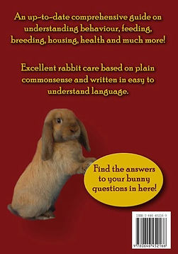 Back cover of book: The Wonderful World of Pet Rabbits